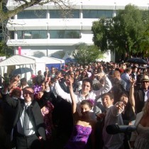 Melbourne Cup 2010